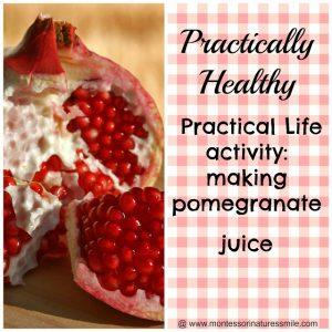 Practical Life Activity: Making Pomegranate Juice