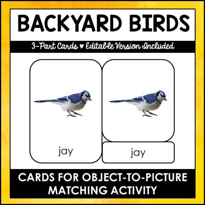 buy backyard birds printable