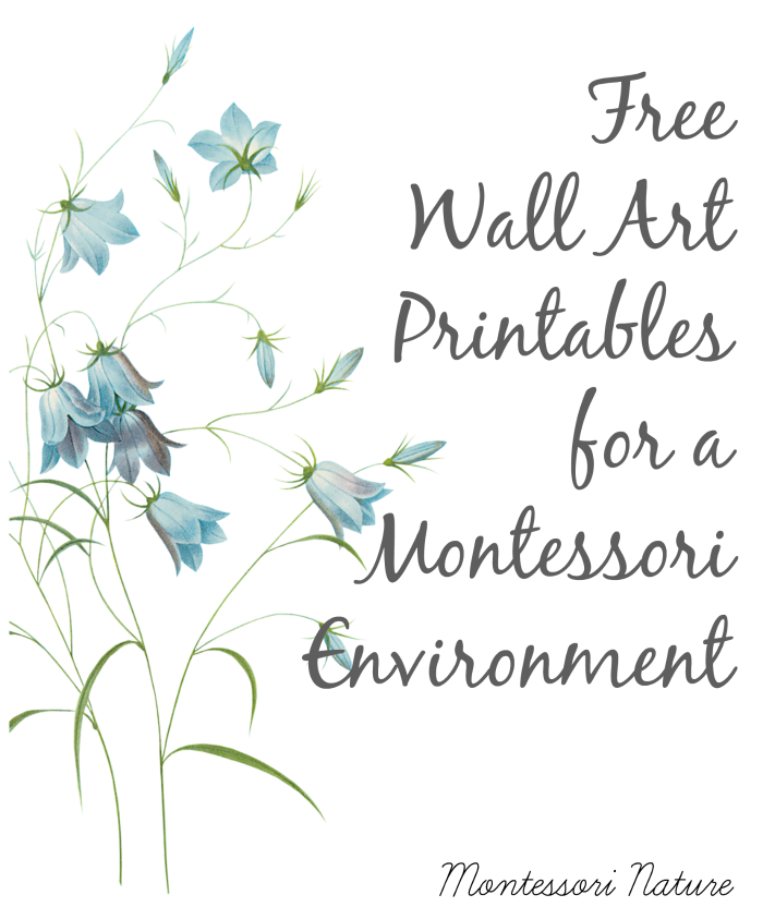 Free Wall Art Printables For A Montessori Environment Montessori