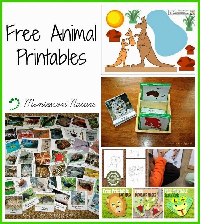 Free Animal Printables - Montessori Nature