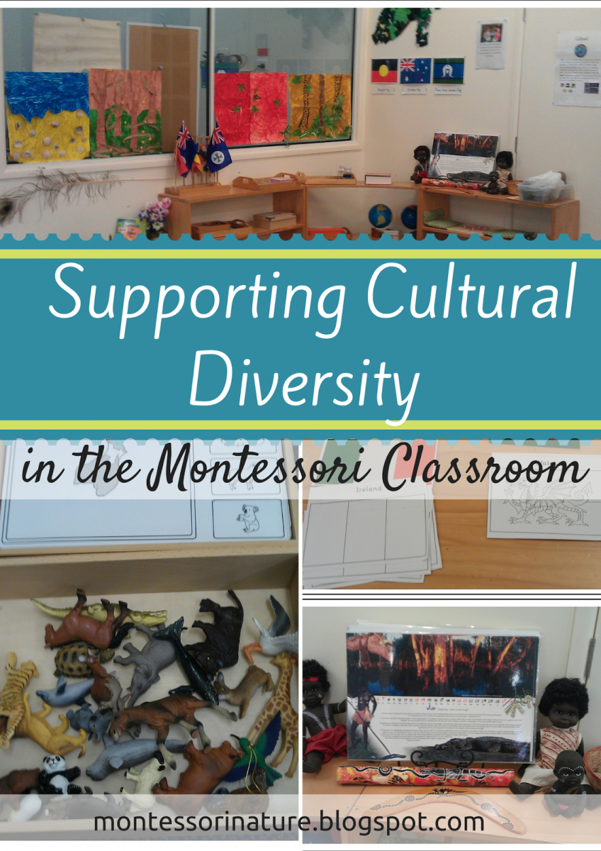 Diversity Toolkit: Cultural Competence for Educators