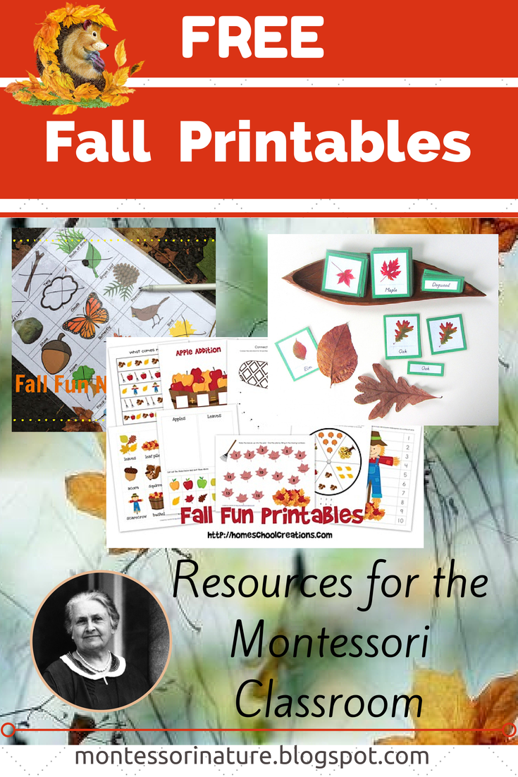 Old Fashioned image with free pumpkin worksheets printable