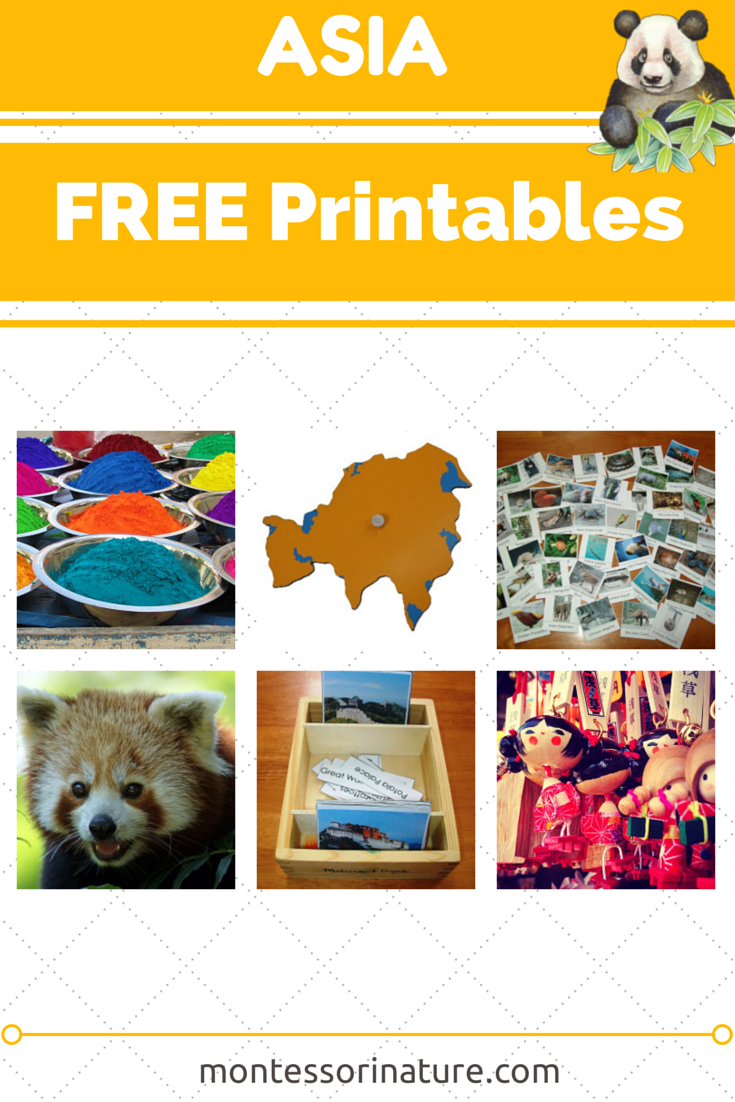 asia free printables resources for the montessori classroom montessori nature. Black Bedroom Furniture Sets. Home Design Ideas