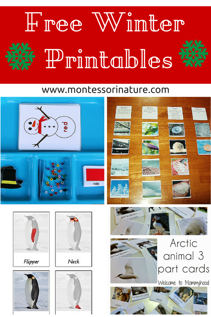 Free Winter Printables for Kids - Montessori Nature