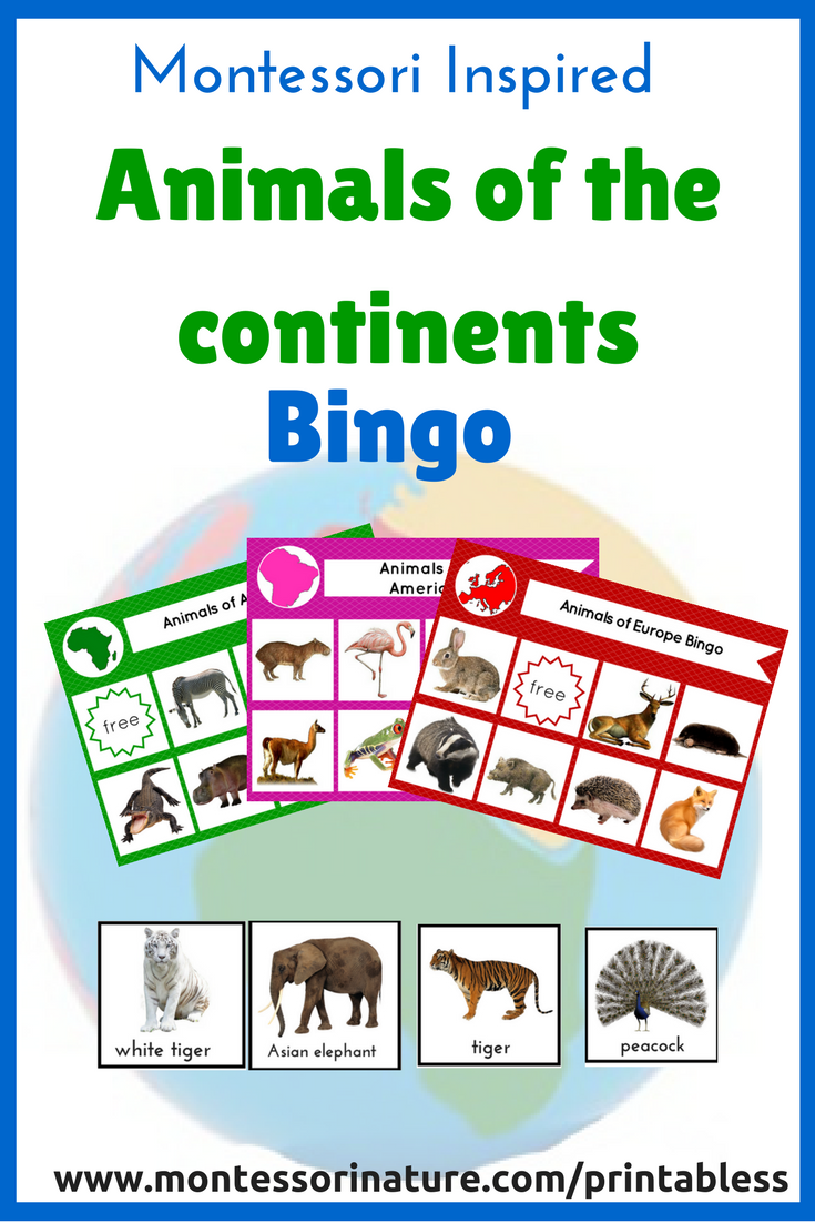 Animals of The Continents Bingo Game