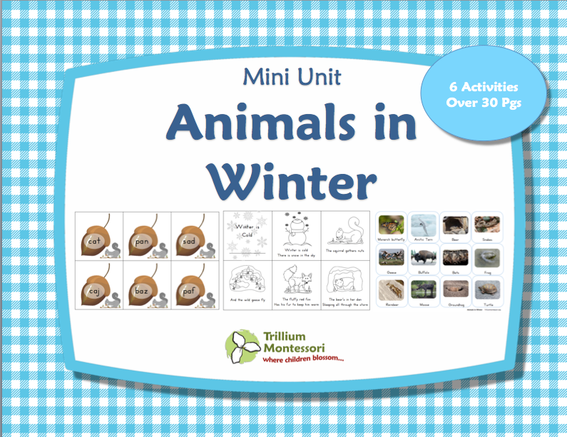 Animals In Winter Printables Pack Montessori Nature