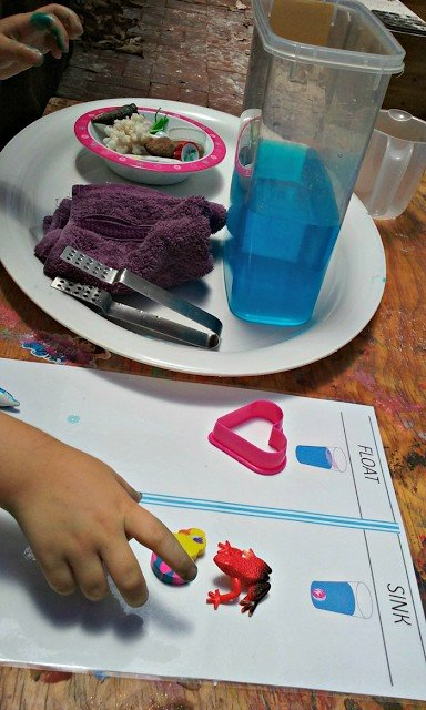 Sorting objects into those that sink and float.