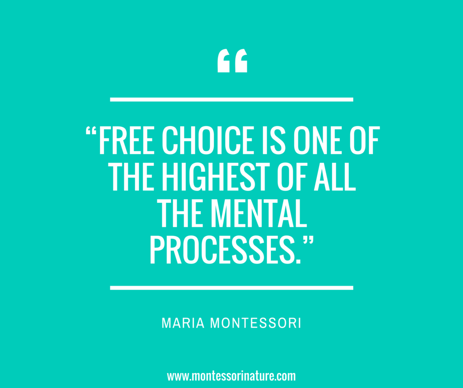Quotes of Maria Montessori | Inspiration for Teachers and ...