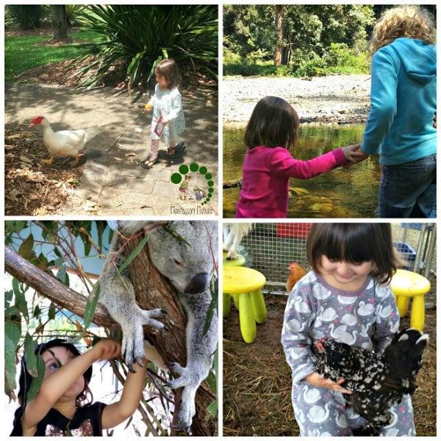 homeschool activities outdoors