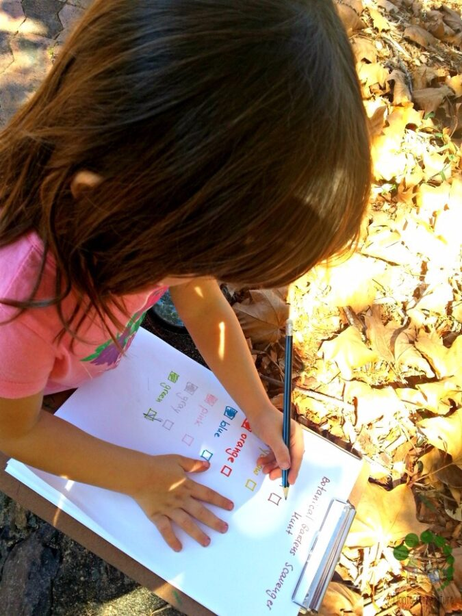 Colour Hunt with Preschooler - Montessori Outdoor Classroom