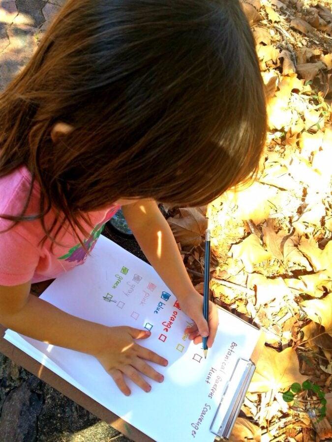 Colour Hunt with Preschooler - Montessori Outdoor Classroom