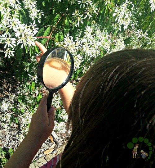 Magnifying Glass Montessori Outdoor Explration Colour hunt
