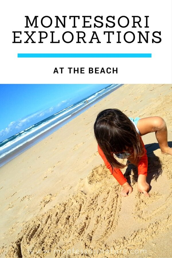 Montessori Explorations At The Beach