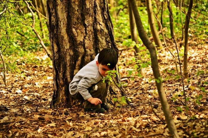 Quotes On Nature Steering Away From Nature Deficit Disorder