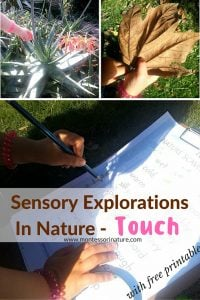 Sensory Explorations Outdoors – Touch With Nature Hunt Printable