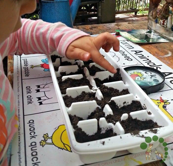 sawing seeds Montessori nature blog