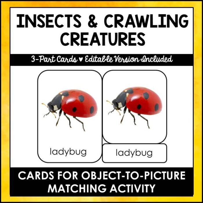 buy insects and crawling creatures printables
