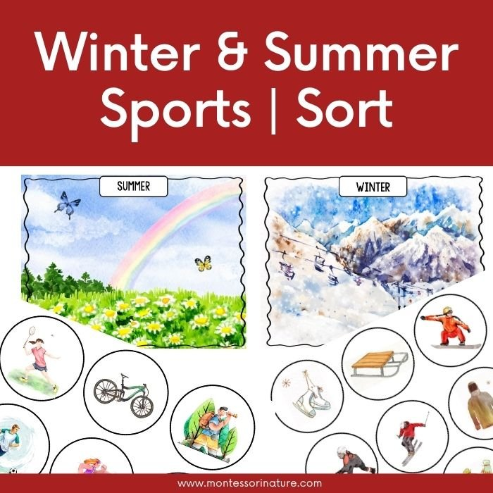 Winter and summer soring cards