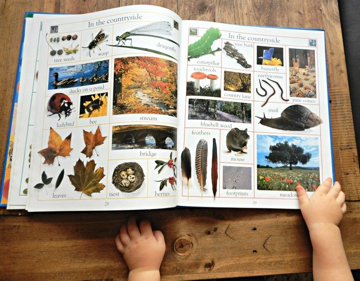 Toddler Book 3 Montessori Nature
