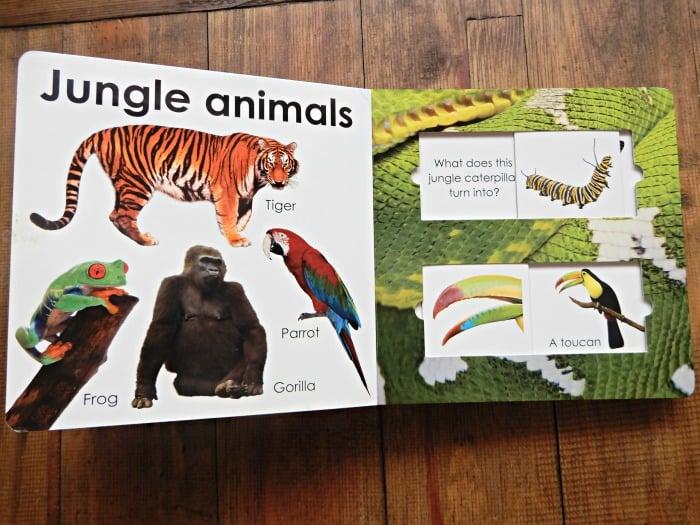 Toddler book with animals Montessori classroom