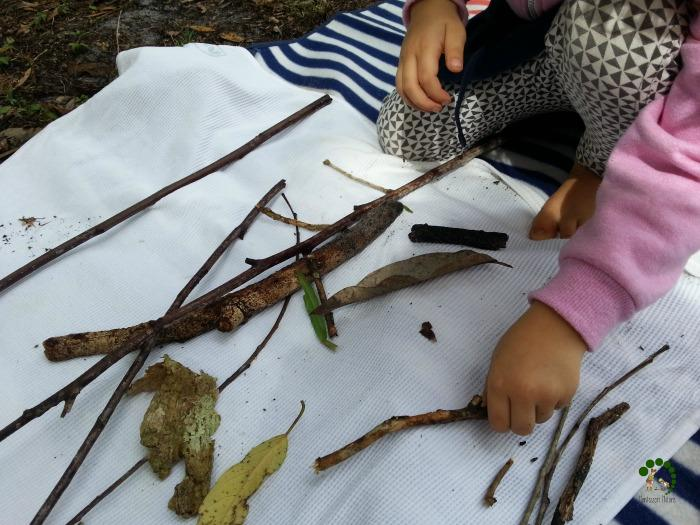 Sorting leaves and sticks Montessori Nature