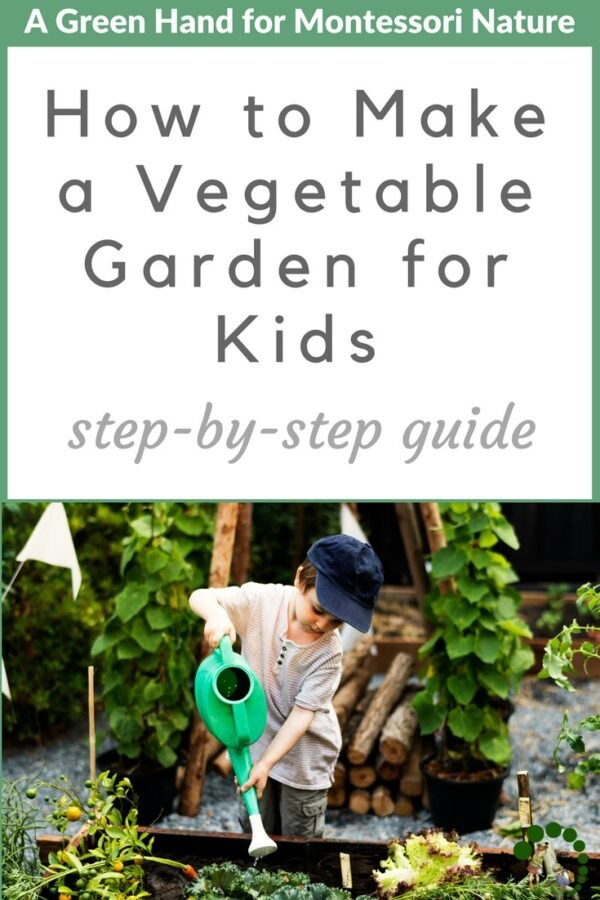 How to Make a Vegetable Garden for Kids (2)
