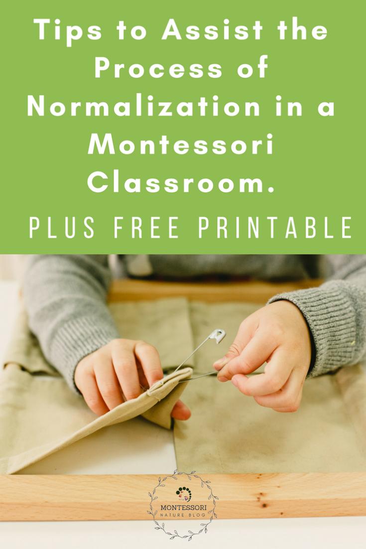 three stages of normalization montessori