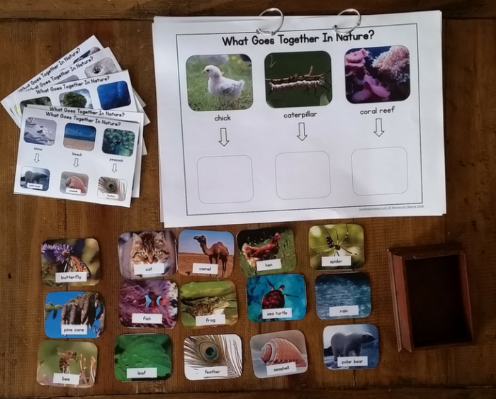 What Goers together in nature printable cards