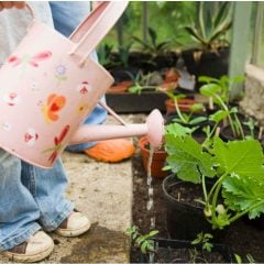 The Importance and Benefits of Teaching Gardening to Children Toddlers to Preschoolers.