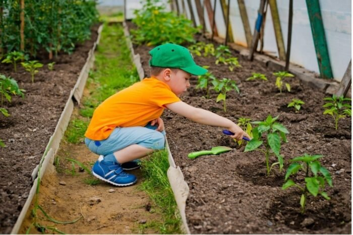 A child raking soil in the green house planted with vegetables