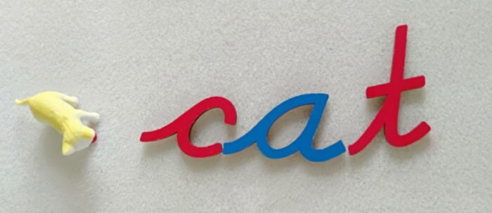 moveable alphabet letters 'c'a't with a toy cat next to it