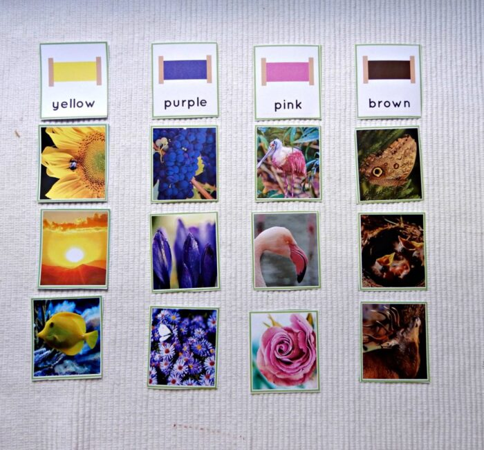 color sorting cards sorted below the color tablet cards