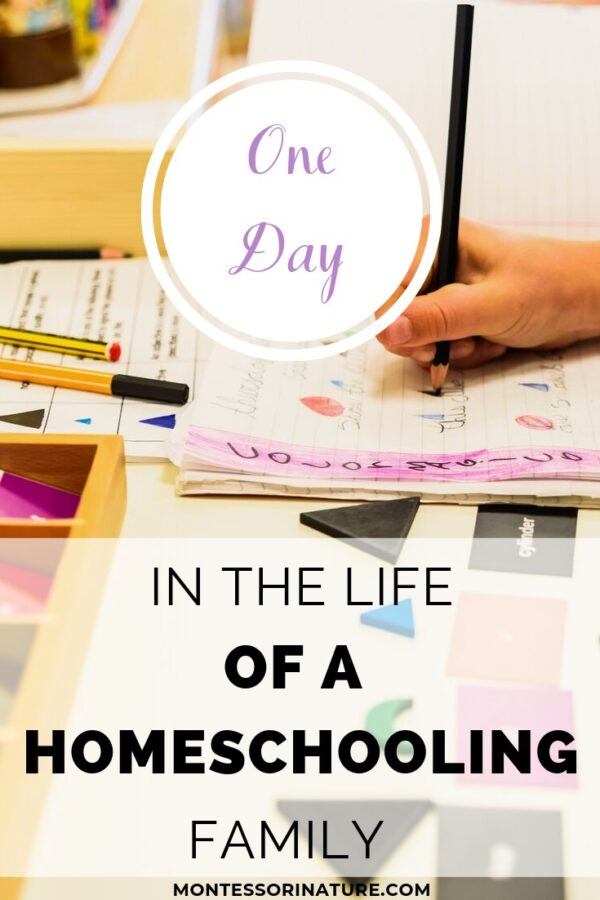 Pin the One Day in the Life of a Homeschooling Family post