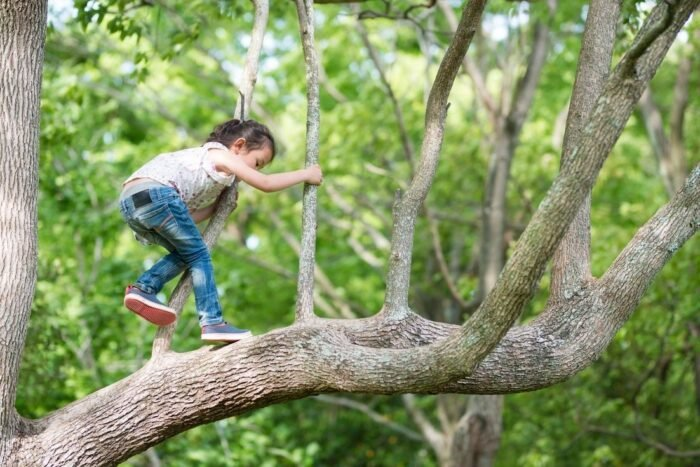 Risk-taking in Play and Everyday Life for Children