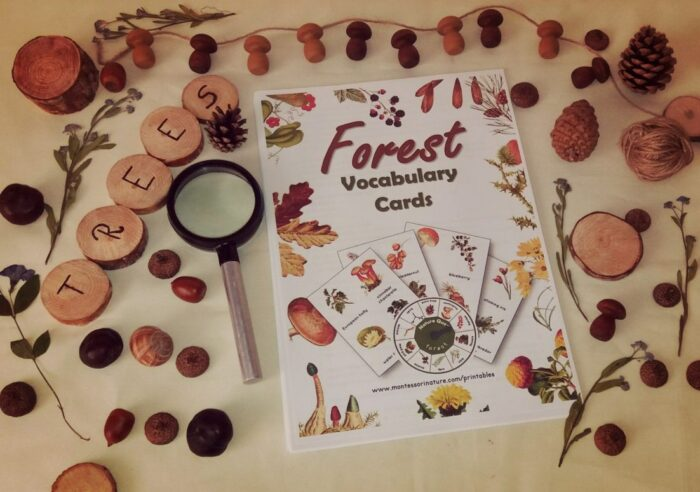 Natural loose parts, wooden letter chips, magnifying glass, printable with forest cards
