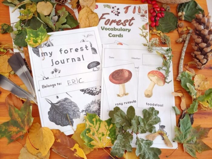Forest Cards and Nature Journaling
