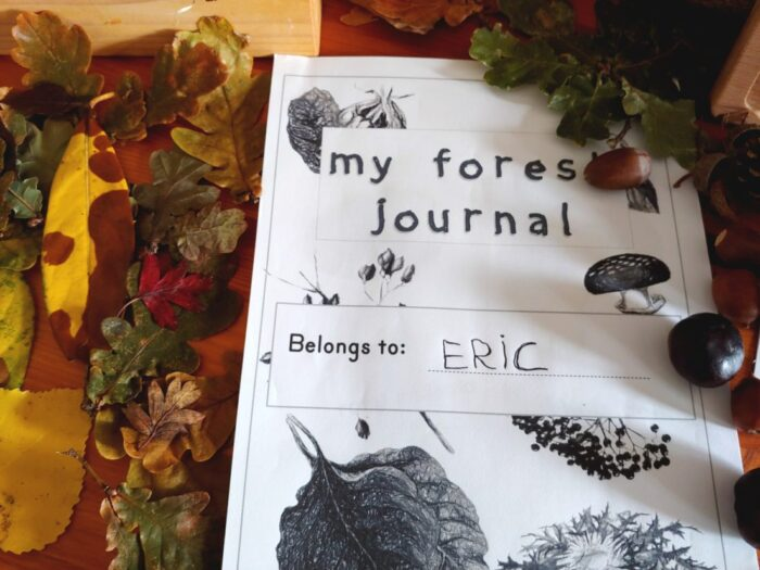 Natural loose parts and nature journal pages