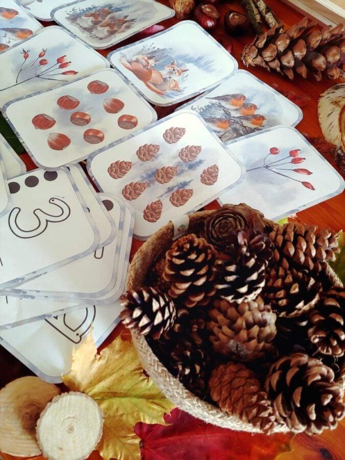 Montessori Nature Printables