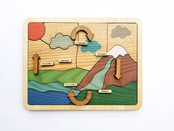 A wooden puzzle with water life cycle