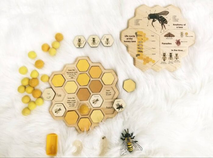 Bee puzzle with hexagon shapes sells, information about bees and bee pictures.