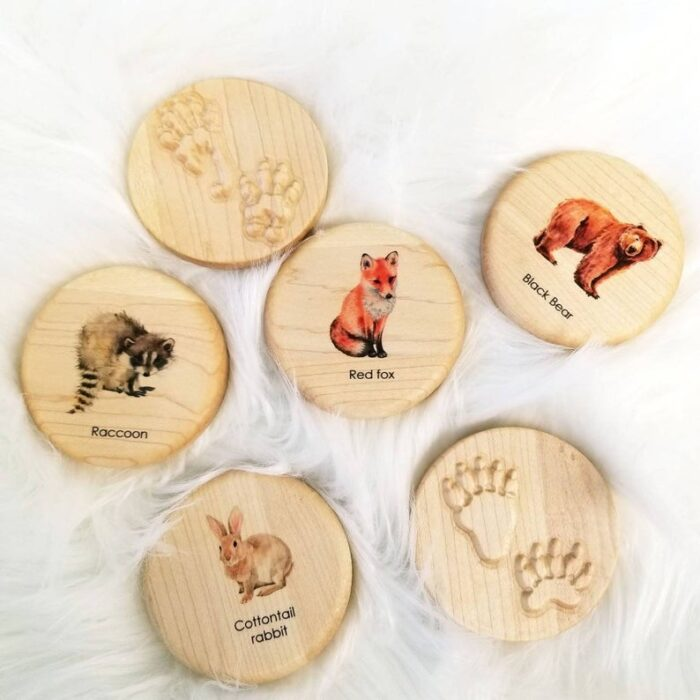 Round wooden chips with animal footprints and animal pictures