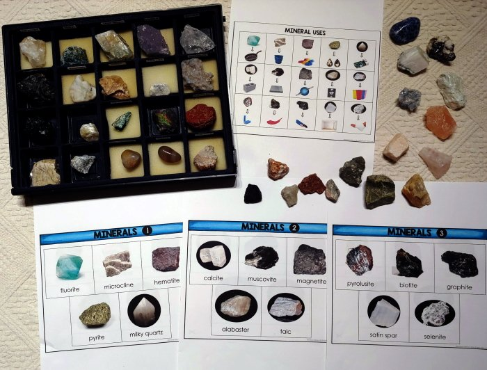 Rocks and minerals speciments and matching cards laying on a rug