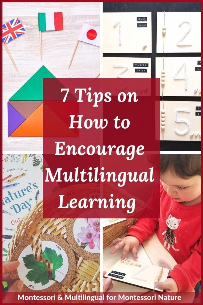 Pin 7 Tips on How to Encourage Multilingual Learning post