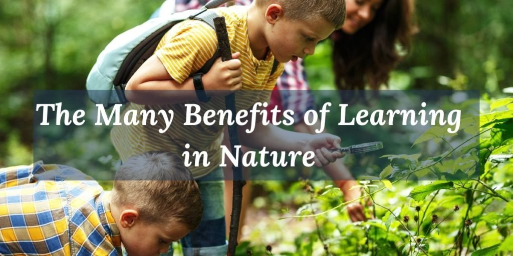 Learn about many benefits of learnin in nature.