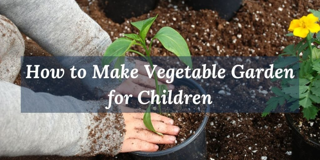Learn about the importance of making a vegetable garden with your children