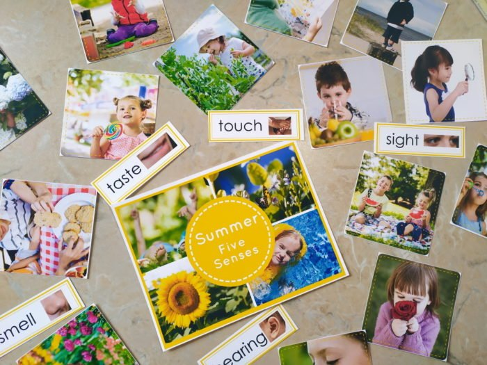 printables with five senses in summer