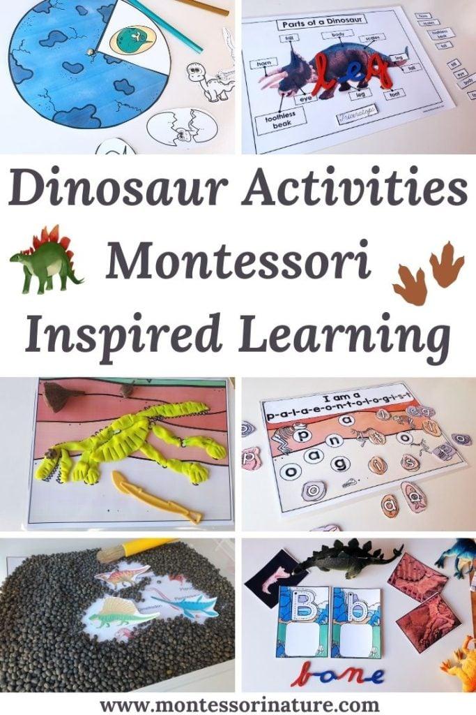 Pin Dinosaur activities