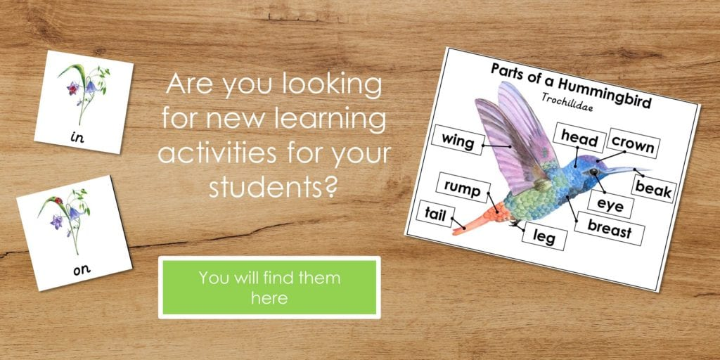 Invitiation to join and download free printable hands-on activities for your students. Click on the image to join our newsletter and download freebies.
