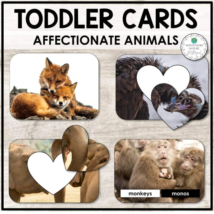 Buy toddler cards with affectionate animals