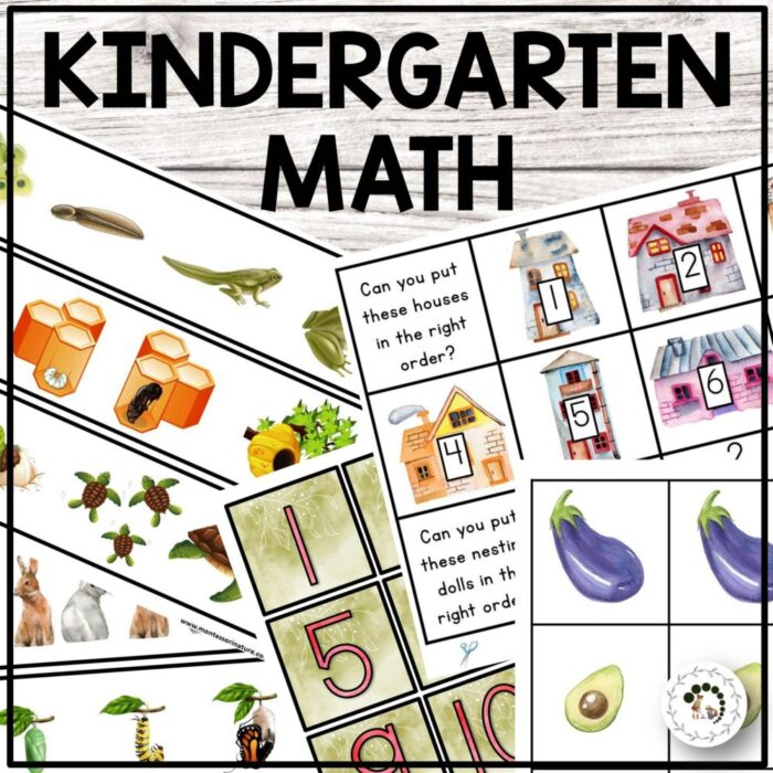 Buy kindertarten math cards